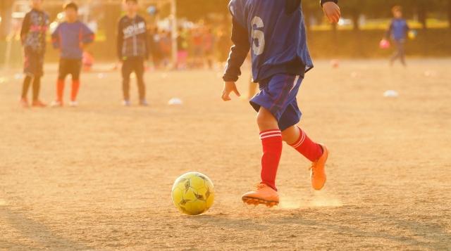 サッカー 少年 神奈川 県
